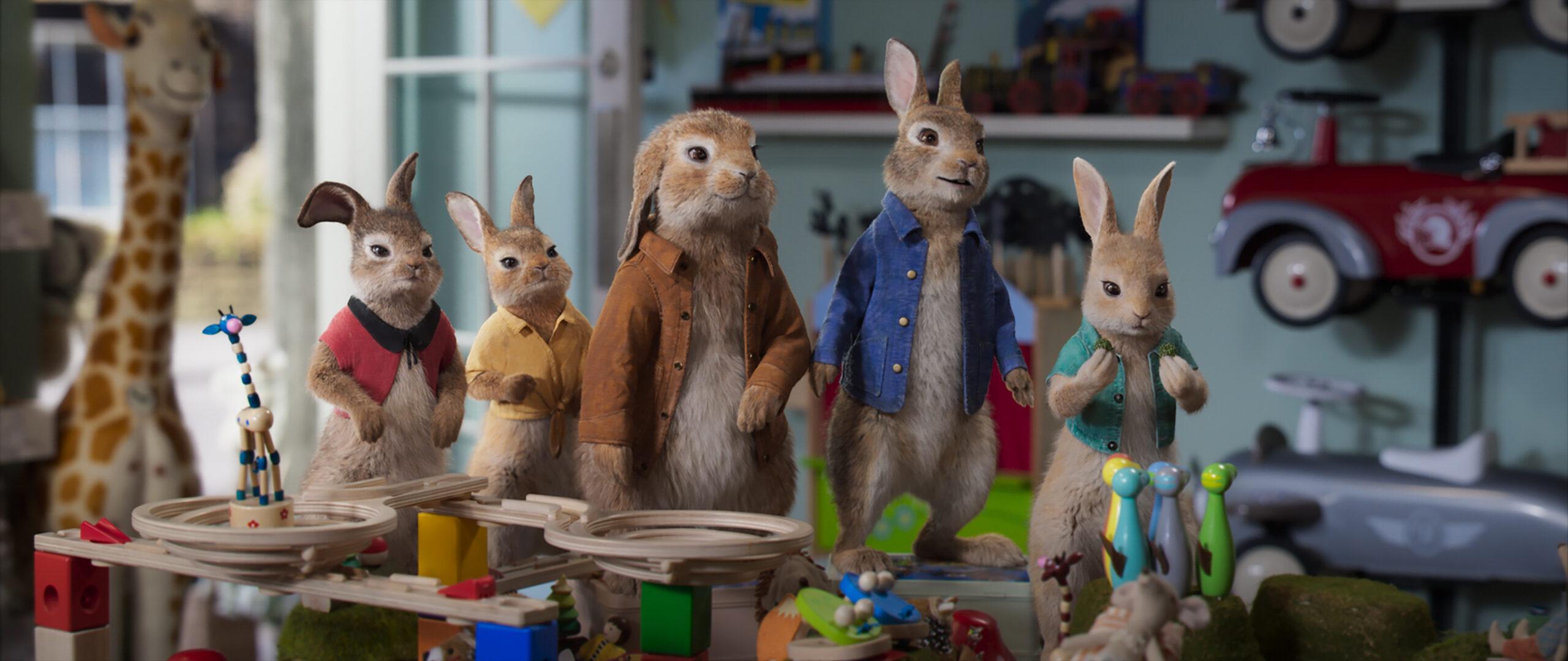 學會愛自己《比得兔2:走佬日記》