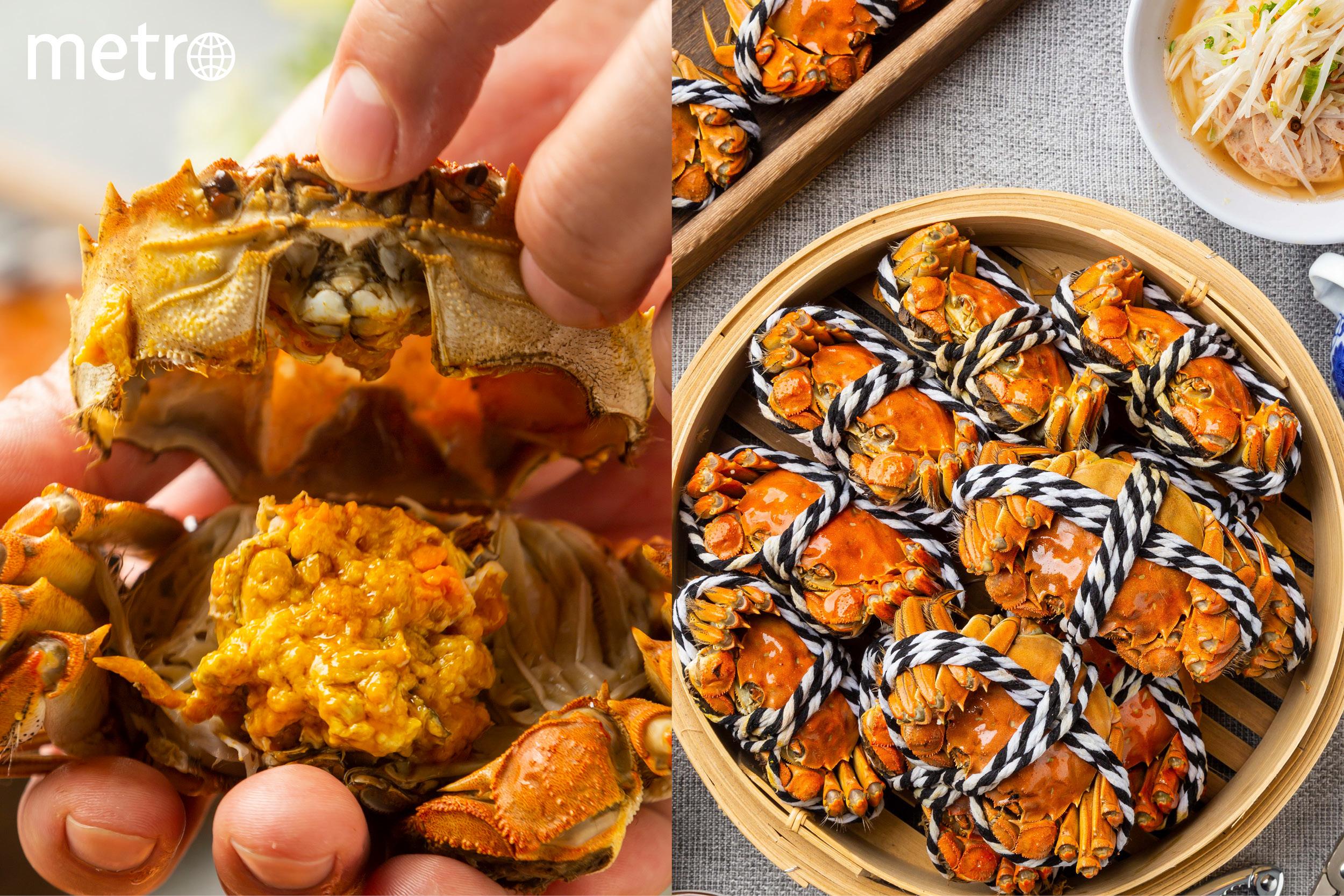 大閘蟹放題 九龍灣新越南餐廳 足料蟹粉料理
